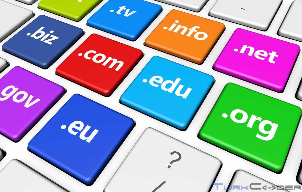 Domain Nasıl Alınır?
