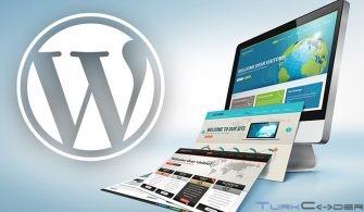 Wordpress Tema Düzenleme Nasıl Yapılır?