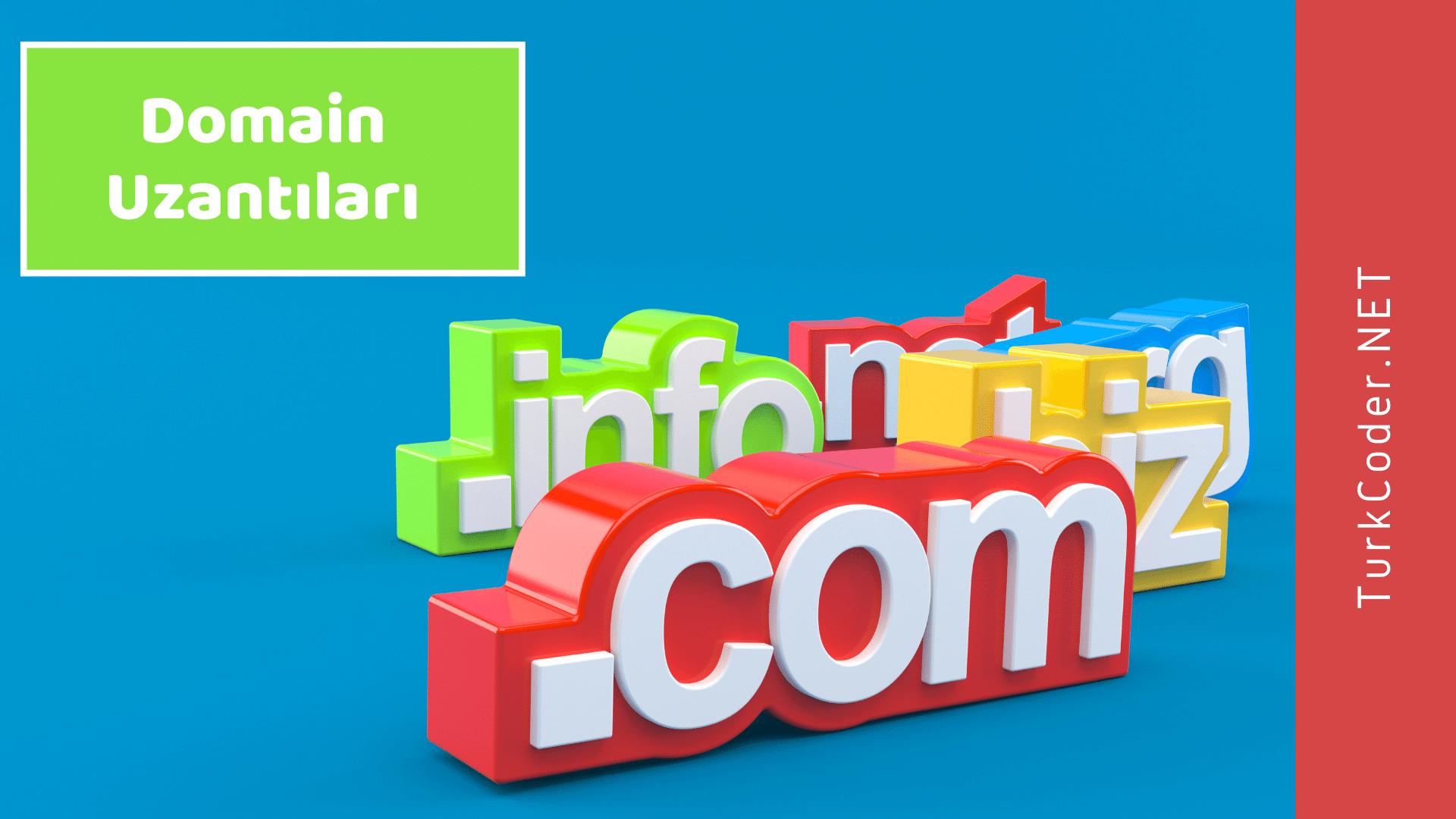 Domain Uzantıları