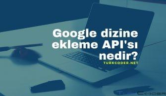 Google dizine ekleme API'sı nedir_