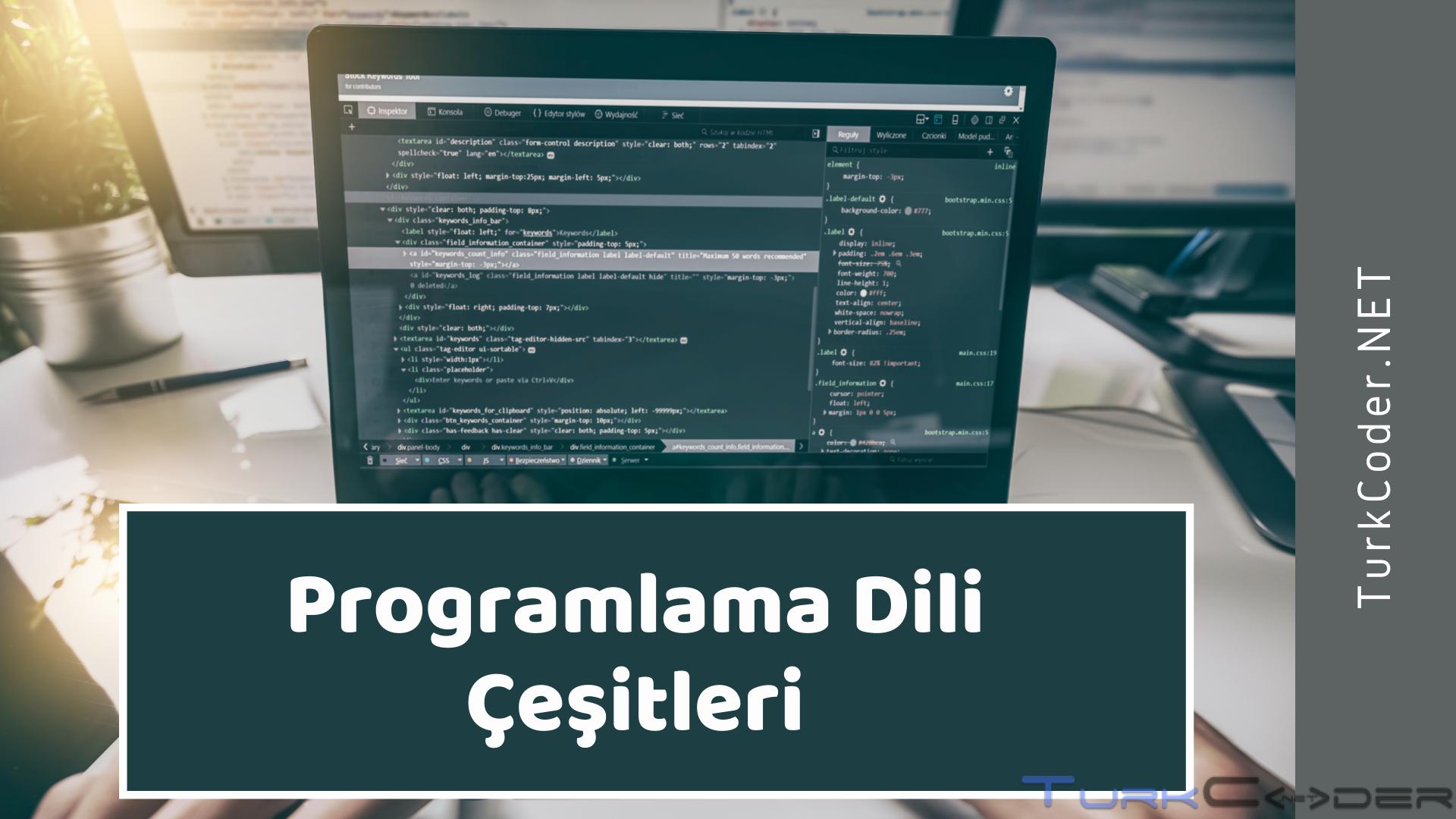 Programlama Dilleri Nedir? Ne İşe Yarar?